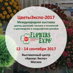 Выставка Flowers - Expo